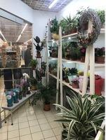 Продам цветочный магазин в Виталюре