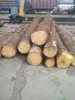Деревообрабатывающее предприятие под Минском