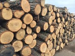 Привлекаем инвестора или займ в бизнес - заготовка и продажа дров