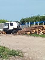Пилорама в Бресткой области